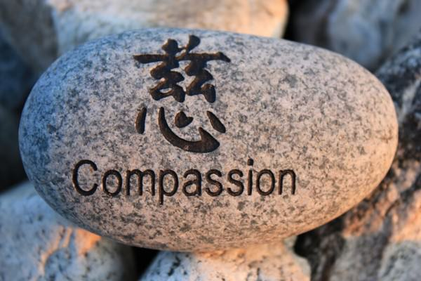 A Theory About Compassion