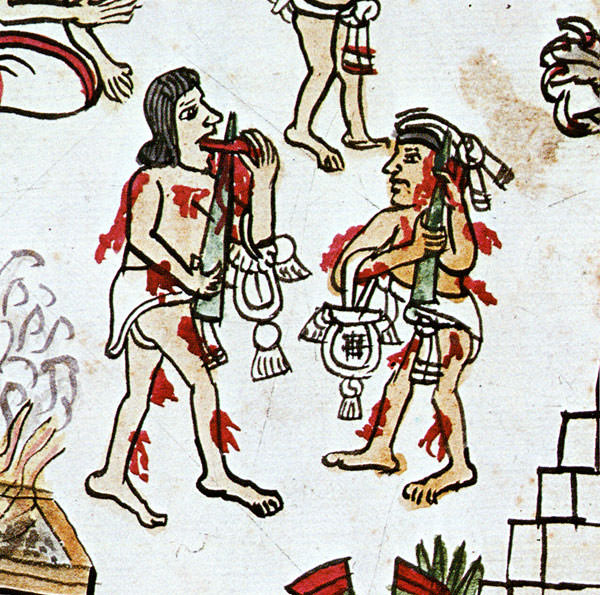 mayan sacrifice ceremony - 509×504
