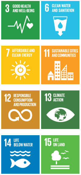 environment sustainable goals